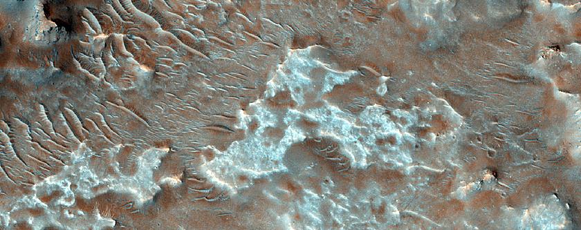 Diverse Bedrock on Crater Floor