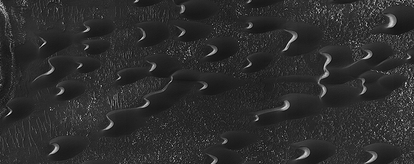 Dunes of the Southern Highlands