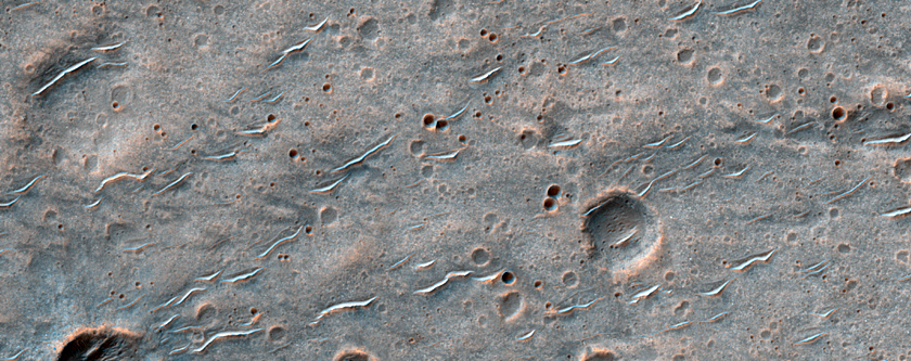 Isolated Secondary Cluster from a Well-Preserved Crater in Hesperia Planum