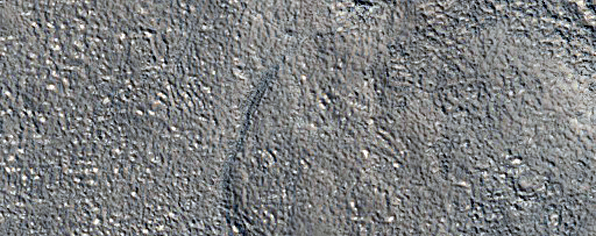 Knob and Flows in Adamas Labyrinthus