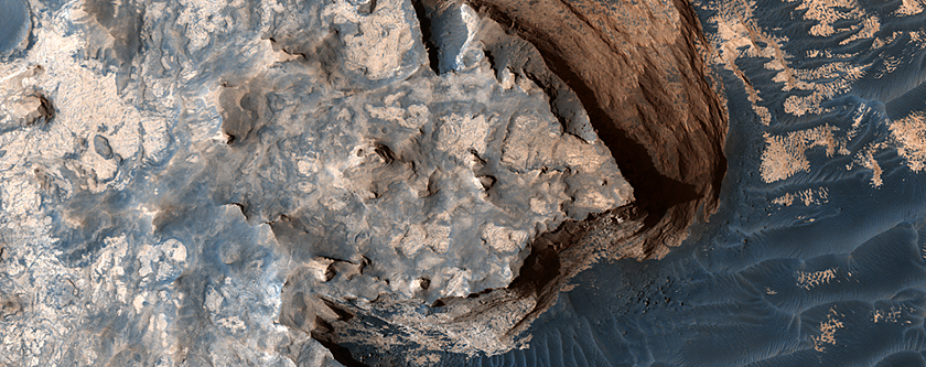 "The White Cliffs of ""Rover"""