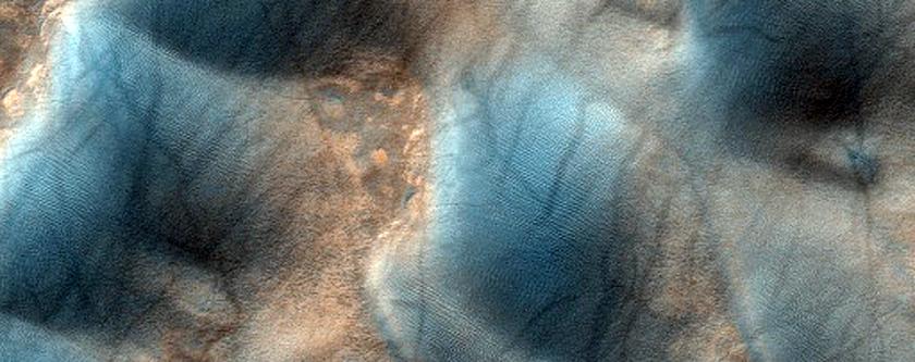 Предположительно новая паукообразная формация на юге земли Terra Cimmeria