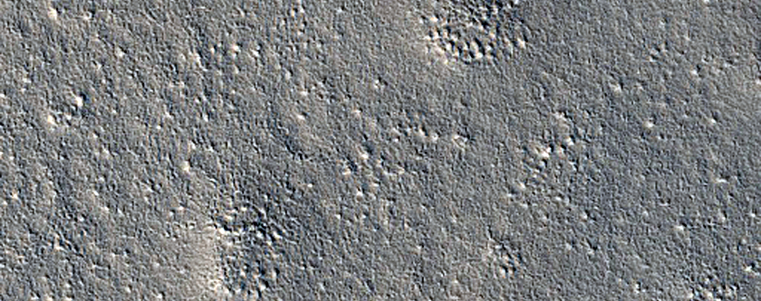 Candidate Red Dragon Landing Site