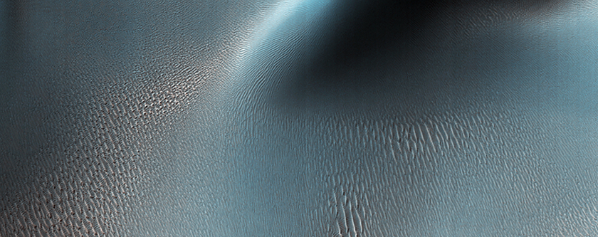 Ripples and Dunes in Proctor Crater
