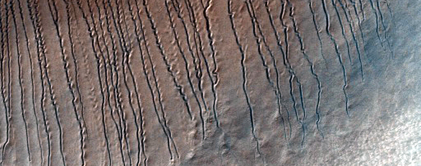 Sinuous Linear Gullies in Hellas Planitia