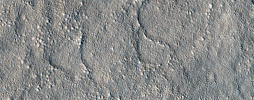Candidate Red Dragon Landing Site in Arcadia Planitia