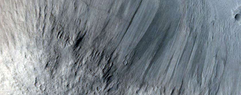 Lava Contacts in Elysium Planitia Region