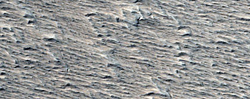 Amazonis Planitia
