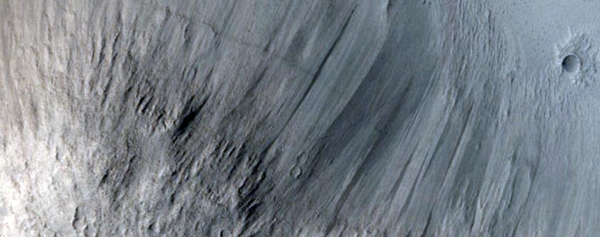 Lava Contacts in Elysium Planitia Region