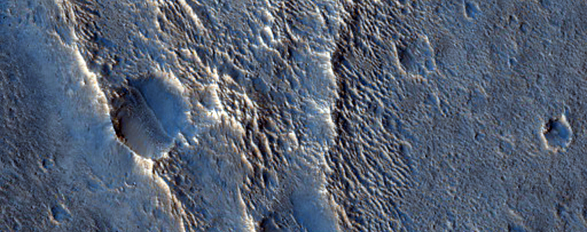 Chains of Mounds in Utopia Planitia