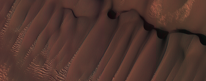 Dunes in Northern Summer