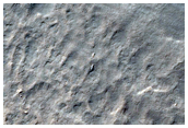 Seasonal View of Elim Crater Spiders inside South Polar Layered Deposits
