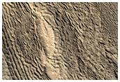 Creste e buchi tra monticelli in Phlegra Montes