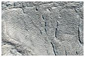 Lines of Pits Near Mareotis Fossae