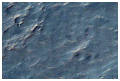 Wind Streaks from Hale Crater