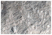 Crater Floor with Reticulate Ridge or Fracture Pattern