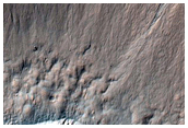 Gullies and Flow in Small Crater North of Newton Crater