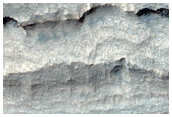 Hydrated Outcrops in Terby Crater
