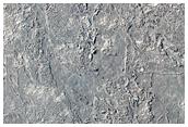 Croûte de lave dans la région occidentale d'Elysium Planitia