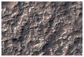 Depositiricchi diclorurotra affioramenti rocciosi