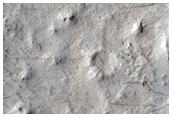 Complex of Meandering Ridges
