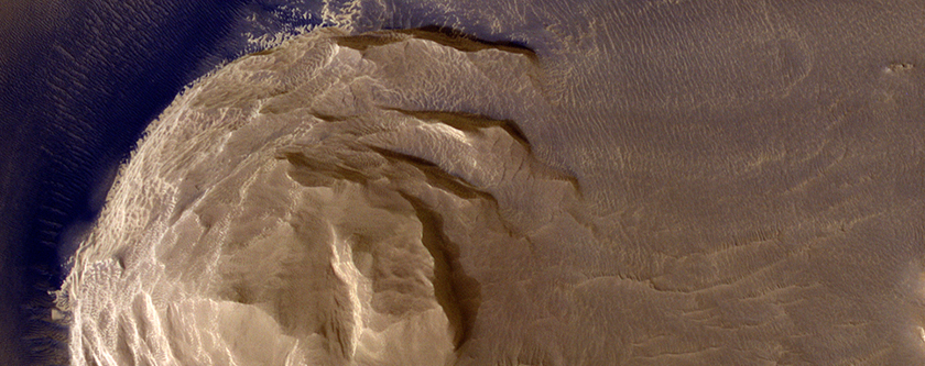 Dark Materials on Olympus Mons