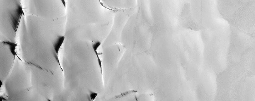 Teardrop Defrosting Features on Dunes