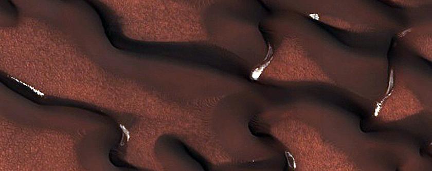 Dunes Dubbed Kaltain