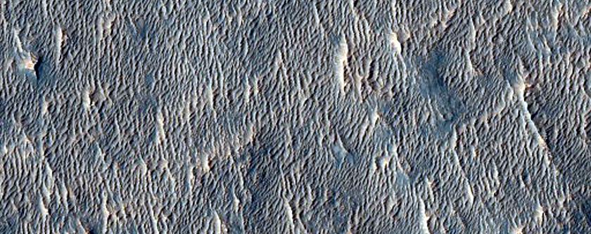 Galaxias Region Flows
