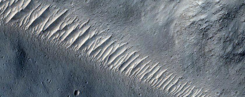 Elysium Catena