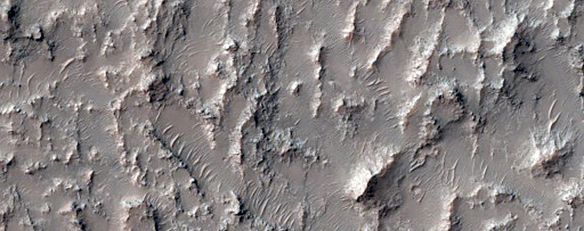 Sedimentary Clay Outcrop