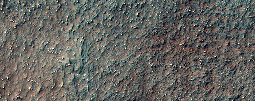 Gullies and Arcuate Ridges in Buried Crater