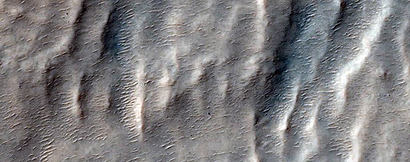 Eastern Continuous Ejecta and Rays from Gasa Crater in Eridania Planitia
