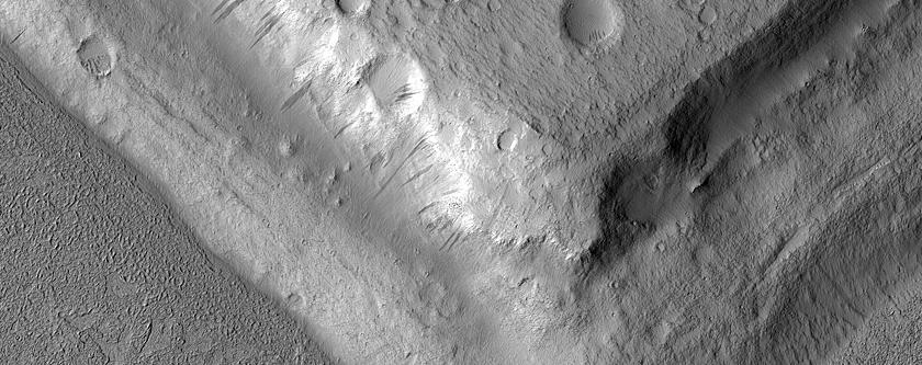 Rising Above It in Amazonis Planitia