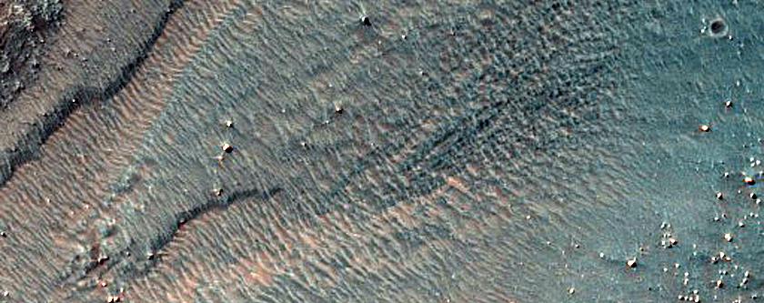 Bright Gully Deposits in Nereidum Montes