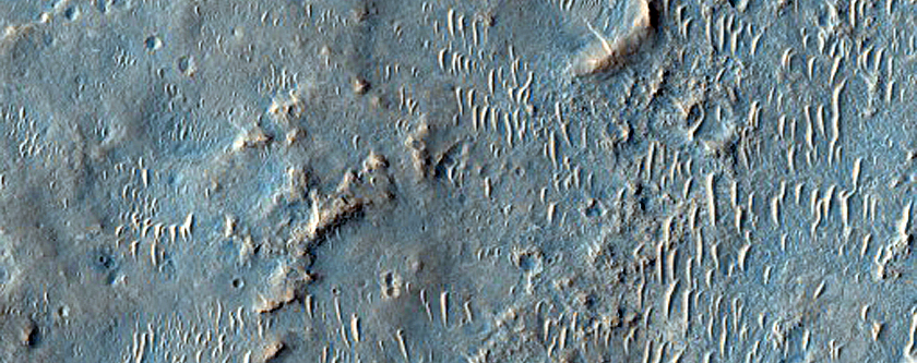 Wrinkle Ridges in West Meridiani Planum