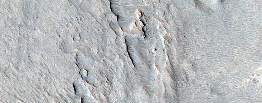 Branched Fan-Like Landform in Northeast Arabia Terra