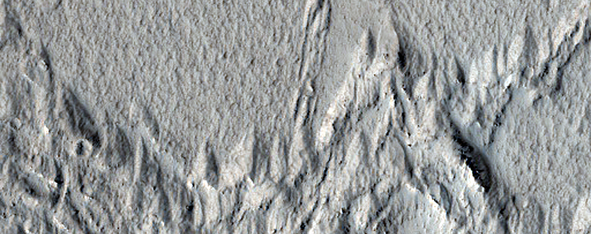 Ridges in Amazonis Planitia