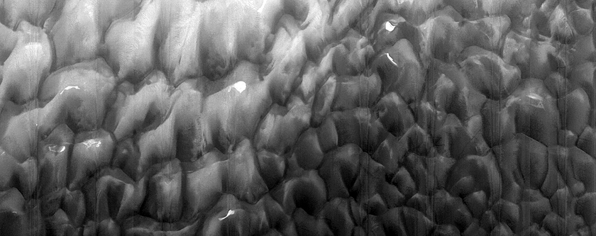 Lyot Crater Dune Monitoring