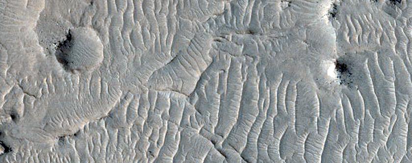 Narrow Ridges in Meridiani Planum