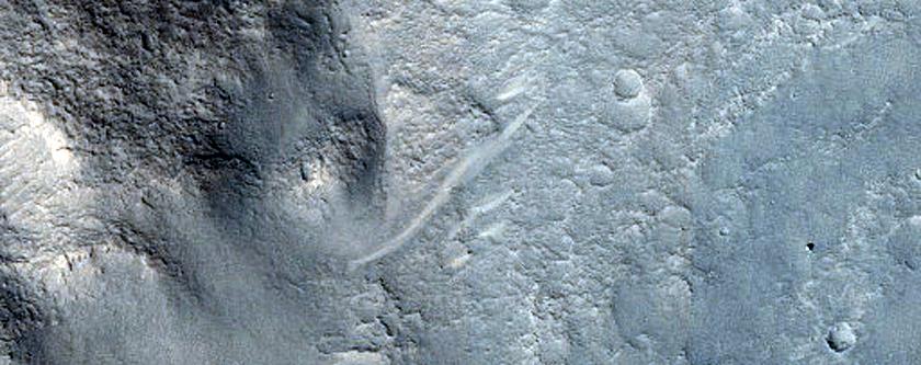Fans in Crater in Elysium Planitia