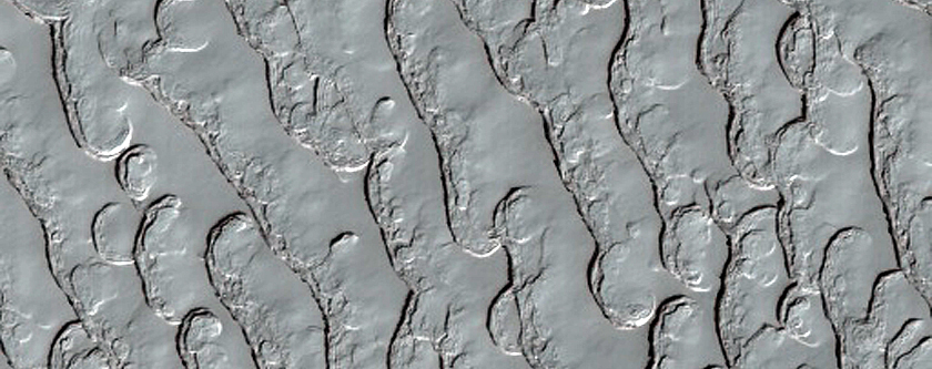 South Polar Residual Cap Thumbprint Terrain