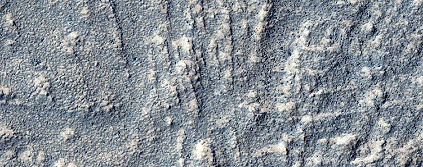 Transverse Ridges on Euripus Mons