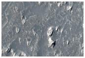 Pits and Trough in Daedalia Planum