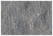 """Possibile sito di atterraggio della """"Red Dragon"""" in Arcadia Planitia"""