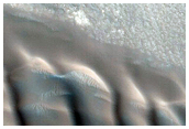 Monitor High-Latitude Gullies and Frost