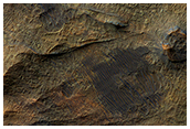 Ridges near Nirgal Valles