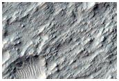 Floor of Columbus Crater