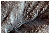 Crater Gullies and Fractures in Acidalia Planitia