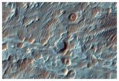 Floor of Roddy Crater